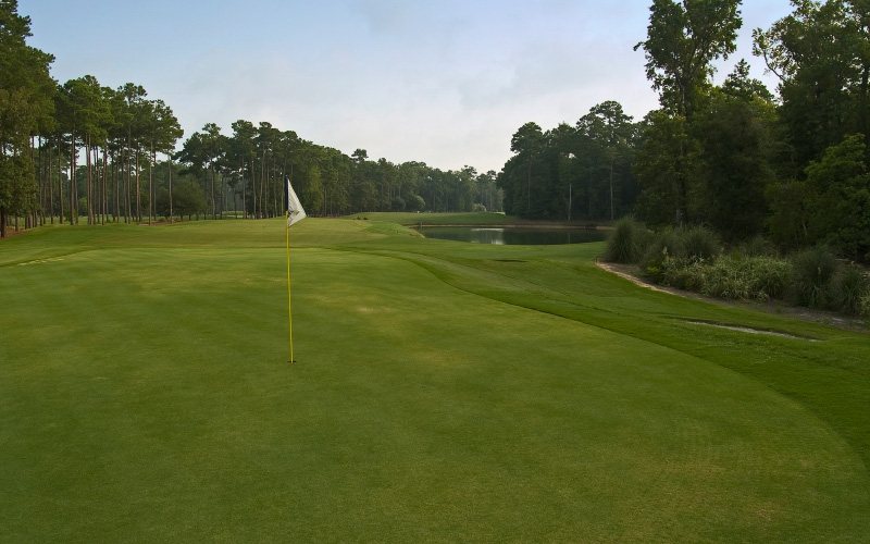 Hole 1 view of the putting green